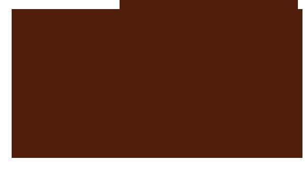 Flor de Caña(フロール・デ・カーニャ) AGED IN ADVENTURE